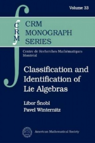 Classification and Identification of Lie Algebras