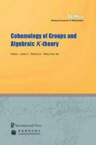 Cohomology of Groups and Algebraic K-theory