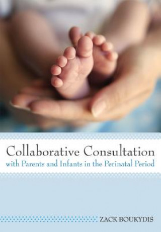 Collaborative Consultation with Parents and Infants in the Perinatal Period
