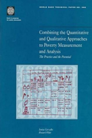 Combining the Quantitative and Qualitative Approaches to Poverty Measurement and Analysis