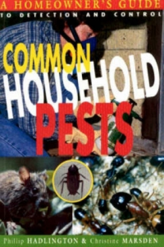 Common Household Pests: a Guide to Detection and Control