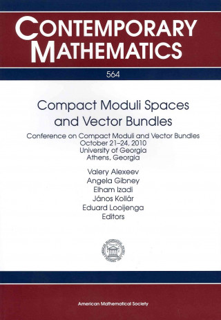 Compact Moduli Spaces and Vector Bundles