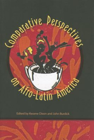 Comparative Perspectives on Afro-Latin America