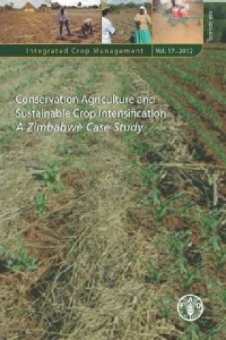 Conservation Agriculture and Sustainable Crop Intensification