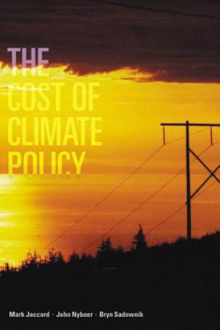 Cost of the Climate Policy