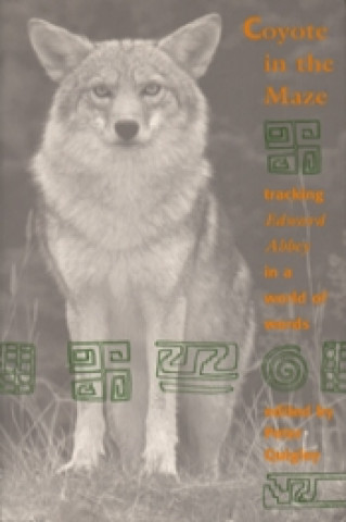 Coyote in the Maze