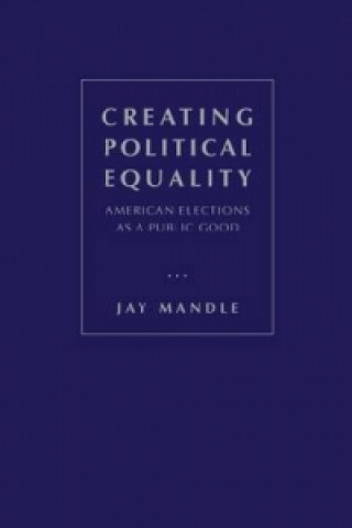 Creating Political Equality: American Elections as a Public Good