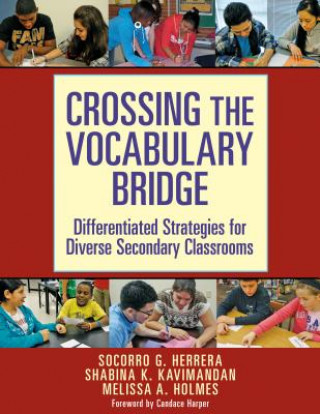 Crossing the Vocabulary Bridge