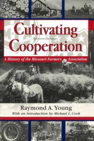 Cultivating Cooperation