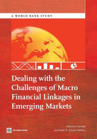 Dealing with the Challenges of Macro Financial Linkages in Emerging Markets