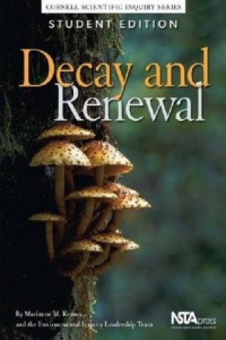 Decay and Renewal