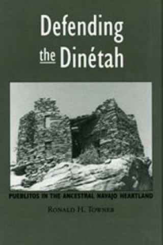 Defending the Dinetah