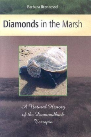 Diamonds in the Marsh
