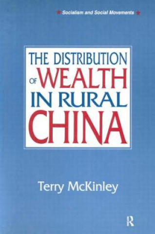 Distribution of Wealth in Rural China