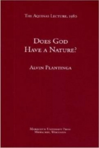 Does God Have a Nature?