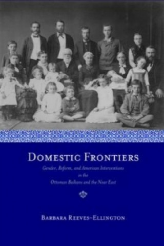 Domestic Frontiers
