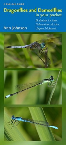 Dragonflies and Damselflies in Your Pocket