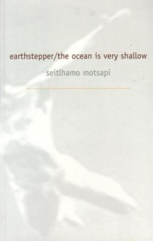 Earth Stepper/The Ocean is Very Shallow