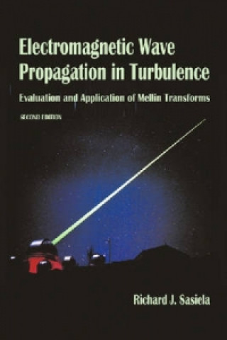 Electromagnetic Wave Propagation in Turbulence