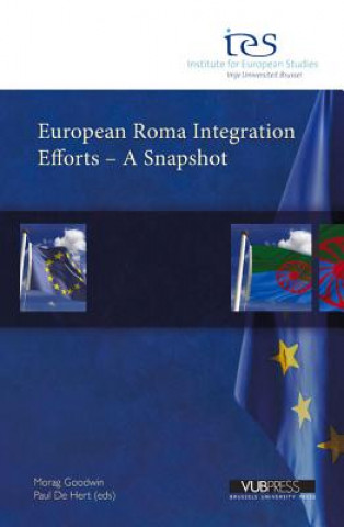 European Roma Integration Efforts - a Snapshot
