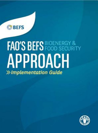 FAO's BEFS (Bioenergy and Food Security) Approach