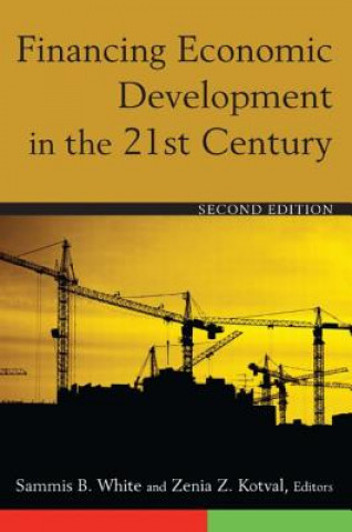 Financing Economic Developments in the 21st Century