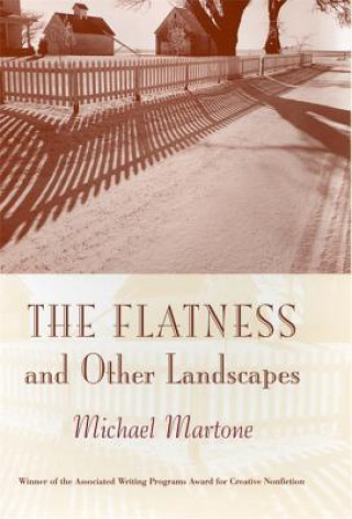 Flatness and Other Landscape