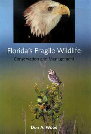 Florida's Fragile Wildlife