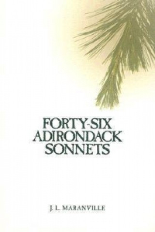 Forty-six Adirondack Sonnets