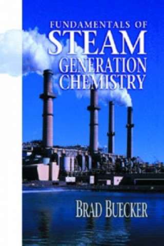 Fundamentals of Steam Generation