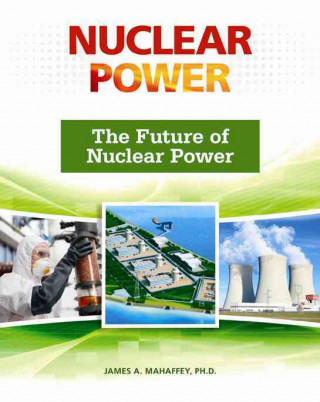 Future of Nuclear Power