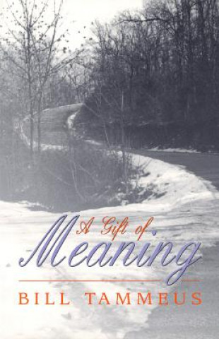Gift of Meaning