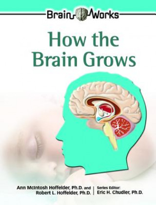 How the Brain Grows