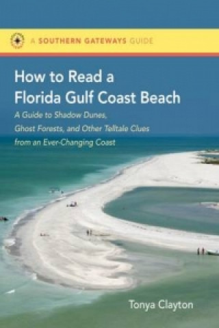 How to Read a Florida Gulf Beach