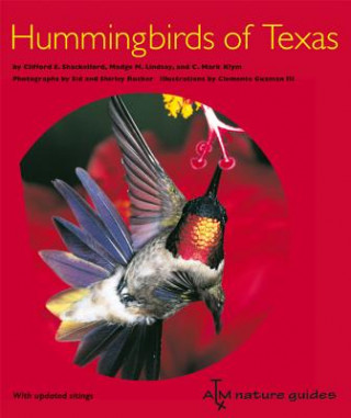 Hummingbirds of Texas