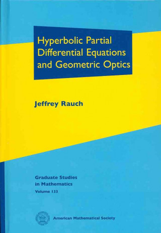Hyperbolic Partial Differential Equations and Geometric Optics
