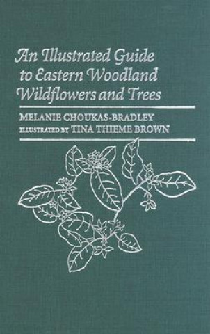 Illustrated Guide to Eastern Woodland Wildflowers and Trees