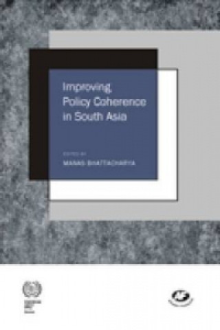 Improving Policy Coherence in South Asia
