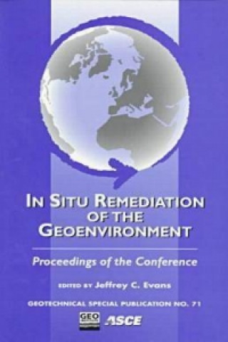 In-situ Remediation of the Geoenvironment