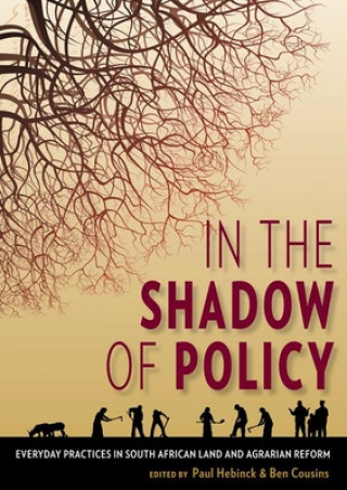 In the shadow of policy