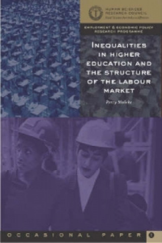 Inequalities in Higher Education and the Structure of the Labour Market