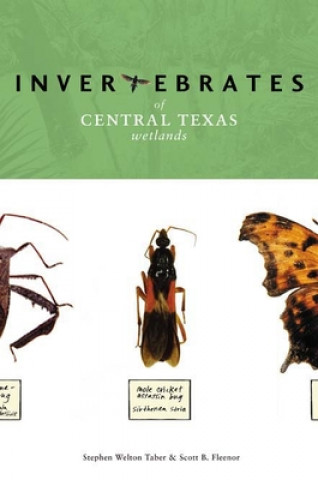 Invertebrates of Central Texas Wetlands