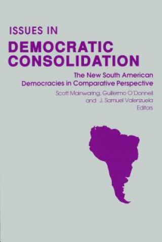 Issues in Democratic Consolidation