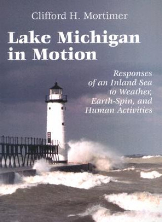 Lake Michigan in Motion