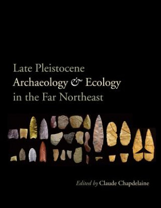 Late Pleistocene Archaeology and Ecology in the Far Northeast