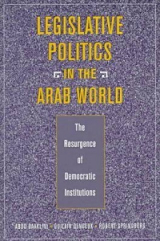 Legislative Politics in the Arab World