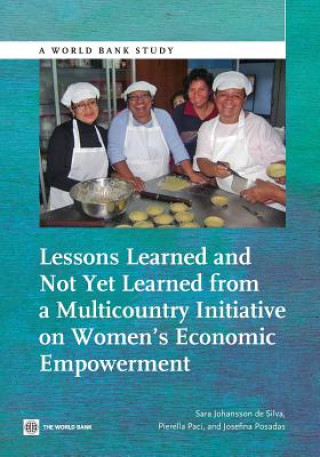 Lessons Learned and Not Yet Learned from a Multicountry Initiative on Women S Economic Empowerment