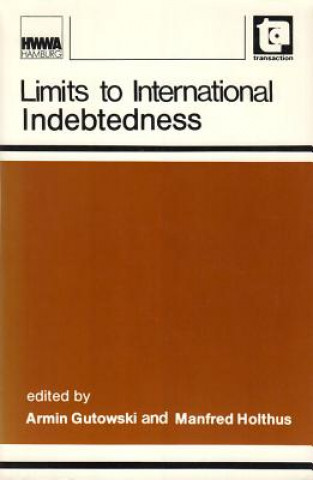 Limits to International Indebtedness