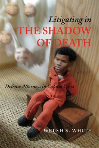 Litigating in the Shadow of Death
