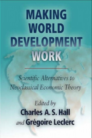Making World Development Work